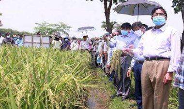 কৃষকদের ৪২ কোটি টাকার প্রণোদনা : কৃষিমন্ত্রী