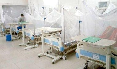 ডেঙ্গুতে আক্রান্ত হয়ে আরও ২১১ জন হাসপাতালে ভর্তি